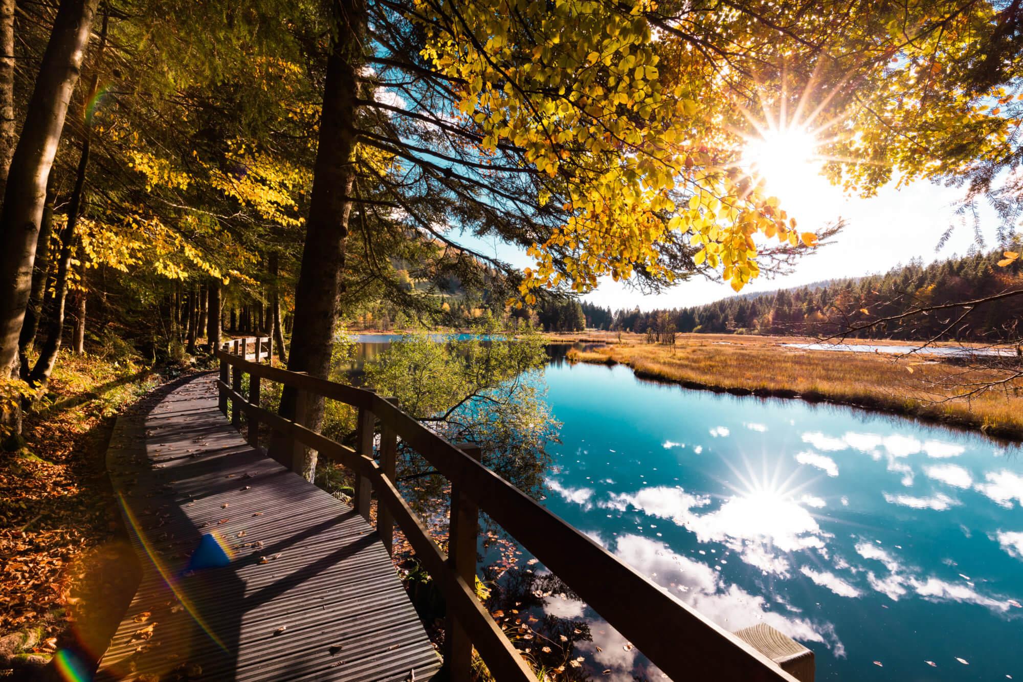 paysage d'automne au lac de lispach