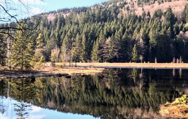 lac des Corbeaux à La Bresse